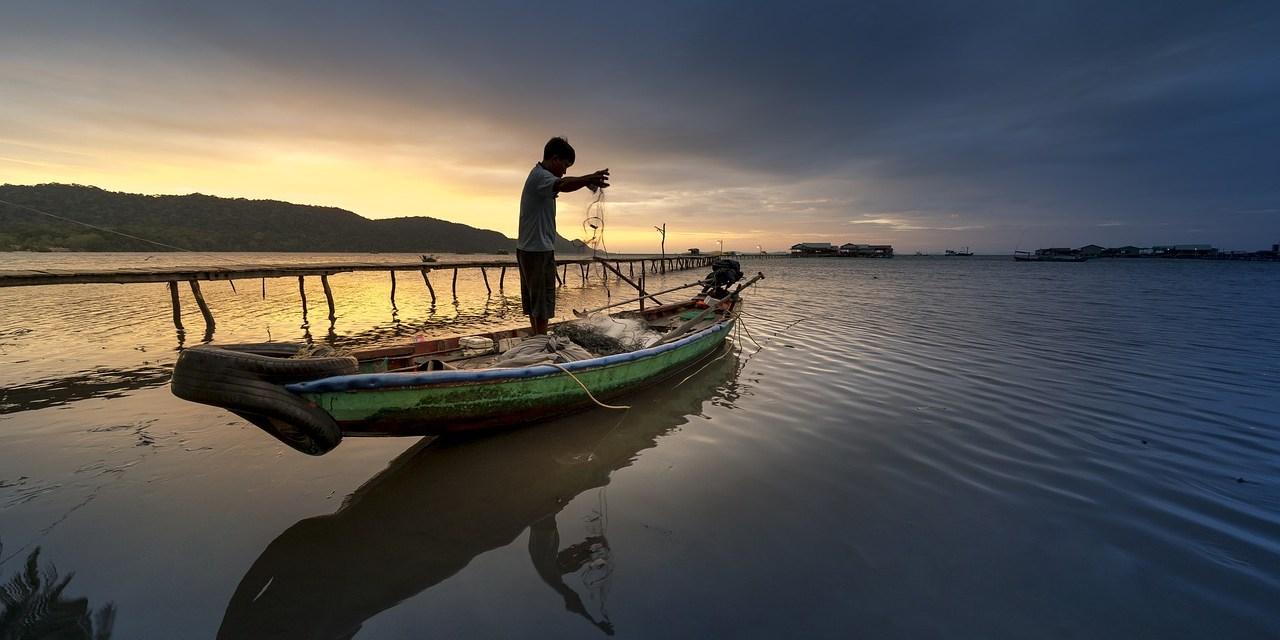 Apprendre à pêcher, c'est taoïste
