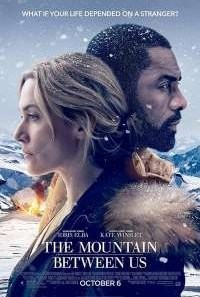 Download The Mountain Between Us (2017) Dual Audio {Hindi-English} Movie