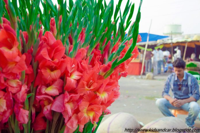 Gudimalkapur Flower Market Hyderabad