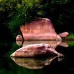 Hyderabad Rocks-Rockathon with GHAC