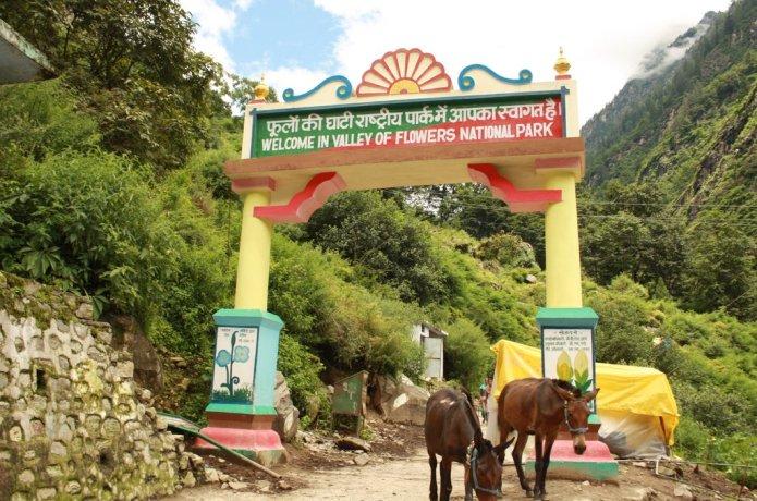 Trek To Valley Of Flowers India