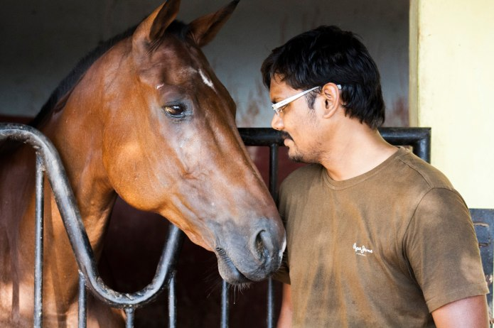a man and his horse in stable