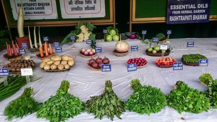 Mughal Gardens organic vegetables