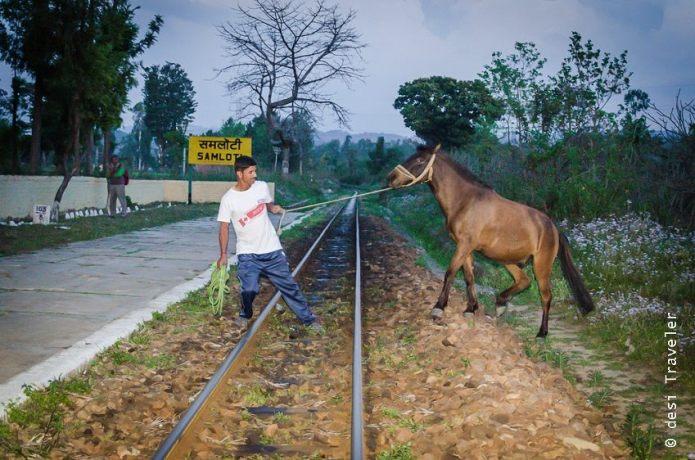 Kangra Valley Railway Station Himachal