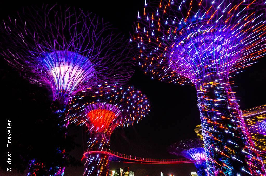 Super tree show night photography