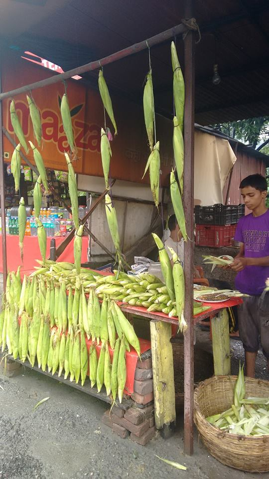Chasing Monsoon in India - Bhutta stall