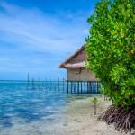 Getting lost in Arborek Tourism Village Raja Ampat Indonesia