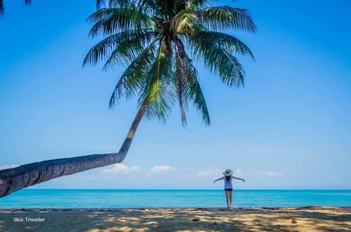 Deer Island Ko Kradat Thailand, bent coconut Tree