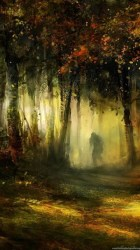 Fantasy Forest Full HD Wallpapers And Desktop Backgrounds Desktop Background