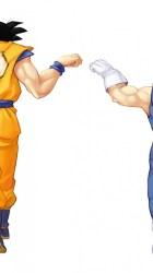 Dragon Ball Z iPhone 5 Wallpapers Desktop Background
