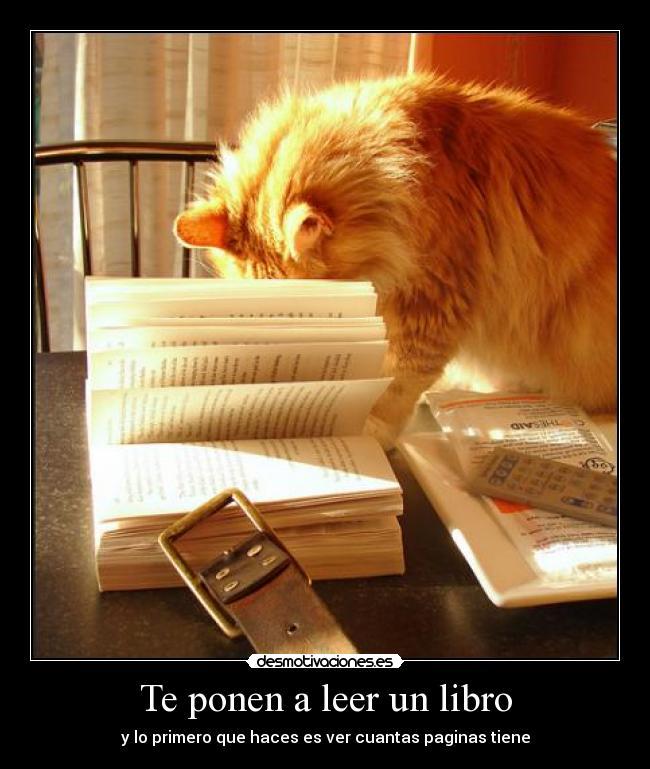 Te-ponen-a-leer-un-libro