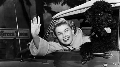 5cd986b542d05 400x225 - Murió la estrella de Hollywood, Doris Day - Télam