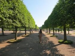 Peterhof Palace São Petersburgo
