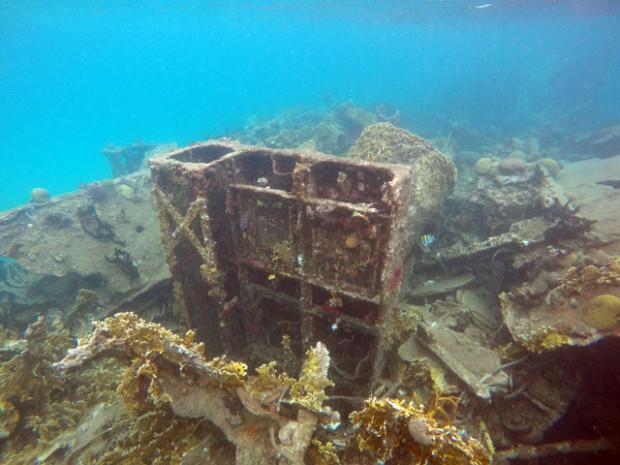 Corais no navio naufragado em Isla Perro Chico, San Blas, Panamá