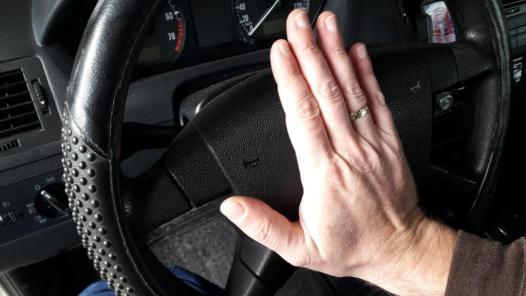 how-to-keep-animals-out-of-your-car-engine-use-car-horn