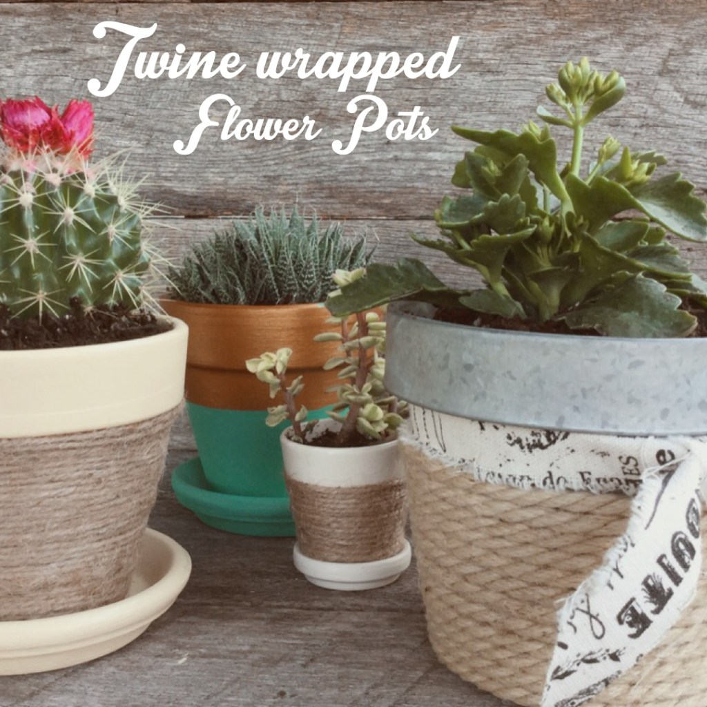 Twine Wrapped Flower Pots | Desperately Seeking Gina