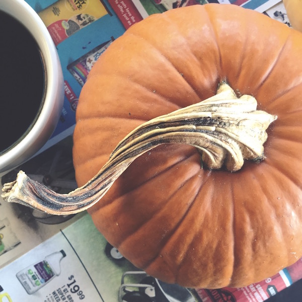 Steamed Pumpkin Purée