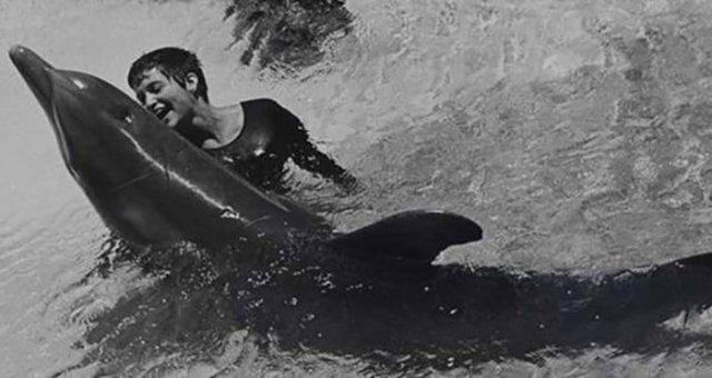 Caso de delfín que se enamoró de su profesora de inglés