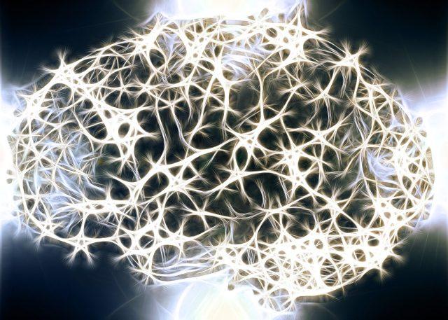 ¿Se pueden regenerar las neuronas?