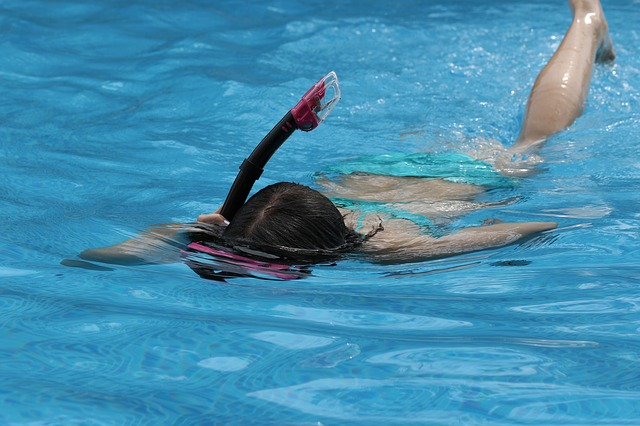 Calentar antes de nadar – Blog Despierta y Entrena