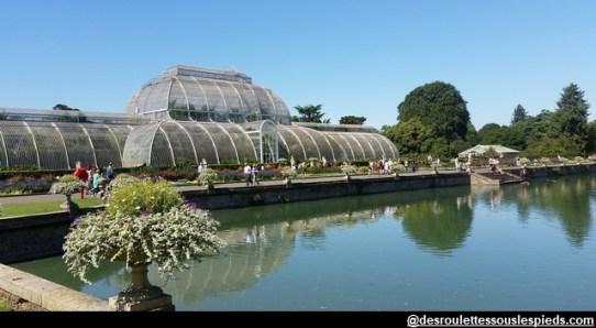 Kew-Gardens-Londres-la-serre
