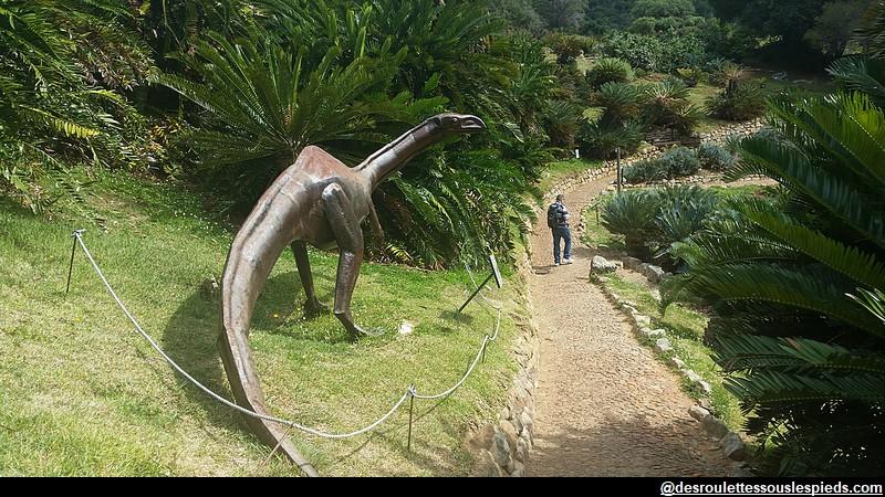 environs-du-cap-Kirstenbosch-jardin-dinausores
