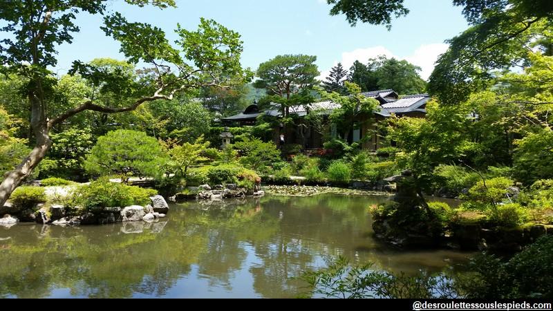 Nara Vue sur maison de thé