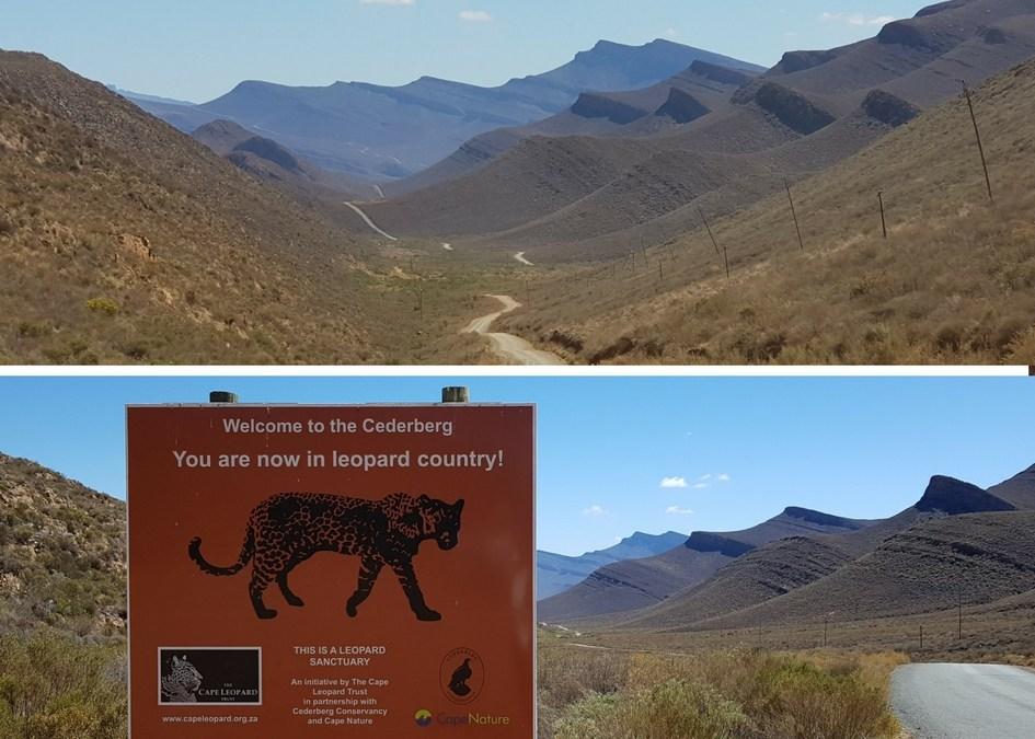 Le Cederberg en Afrique du sud : 5 bonnes raisons d'y aller