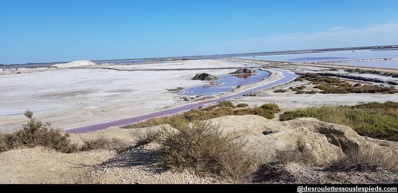 visiter la camargue le point de vue du sel salin de giraud