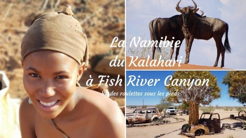 comment visiter la Namibie du Kalahari à Fish River Canyon