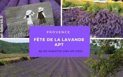 La fête de la lavande à Apt : voir des champs de lavande en Provence