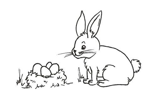 Dessiner un lapin: étape 5 - un lapin de Pâques