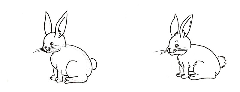 étape 4 - les détails du lapin