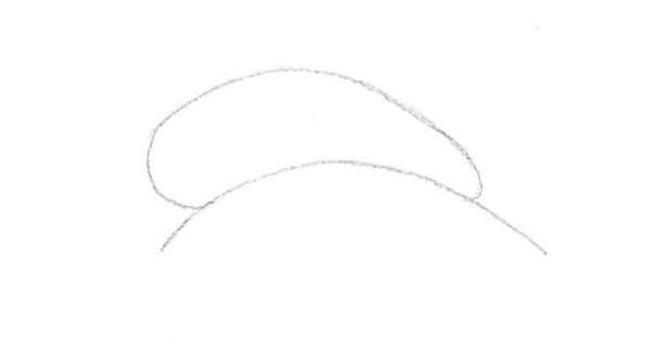 étape 1 pour dessiner un dauphin: un haricot (forme de base)