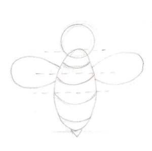 Dessine les ailes et les rayures de l'abeille.