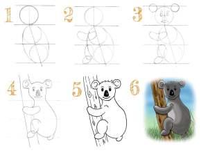 Read more about the article Comment dessiner un koala ?