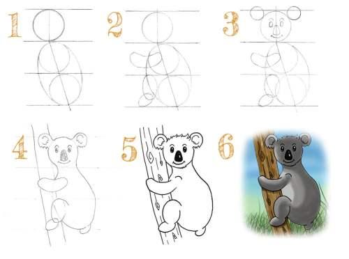 tuto : comment dessiner un koala en 6 étapes