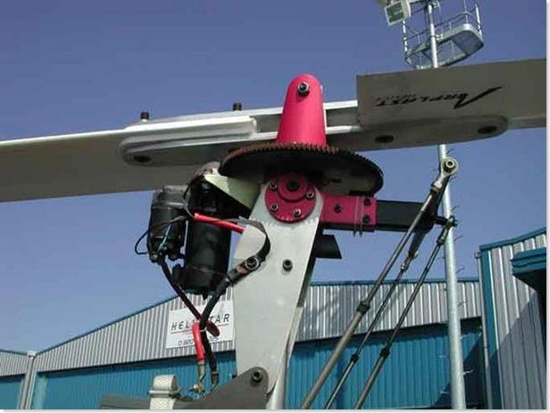 tet-de-rotor-nigrosski-1