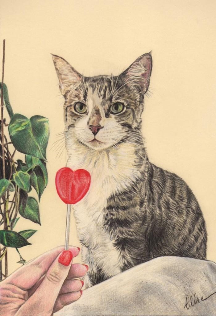Commandez un portrait dessin de vos animaux d 39 apr s photos - Dessin d un crapaud ...