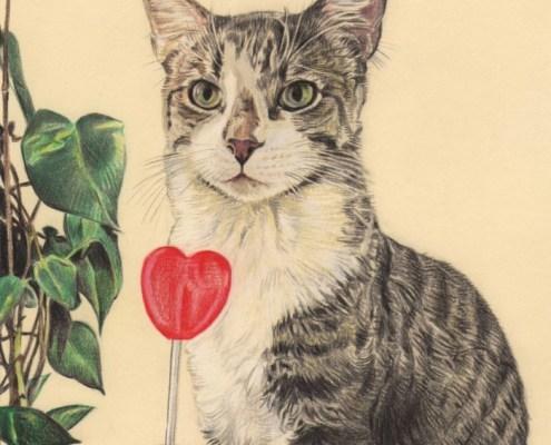 Portrait dessin d'après photo d'un chat avec une sucette en couleur