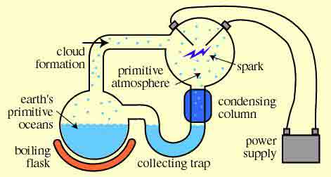 Teoria Supa Primordiala, Foto: idreamofbiochemistry.wordpress.com