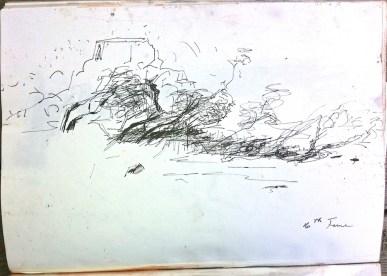Sketch in ink pen from Anbangbang Billabong