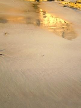 Wet Sand Reflection 2