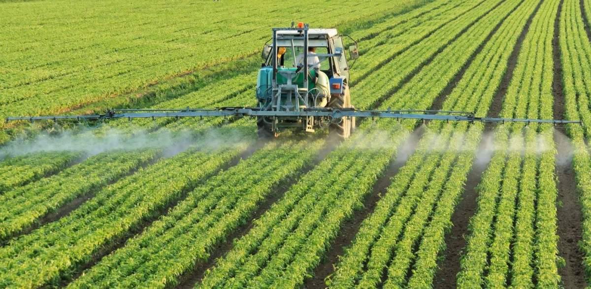 Kankerverwekkend middel glyfosaat wordt nog steeds volop gebruikt in landbouw