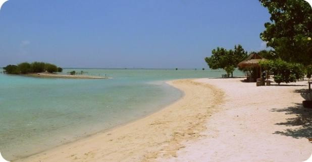 Destinasi Wisata Ogan Komering Ilir :Pulau Maspari