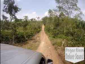 Curup Maung, Akses jalan roda empat dan roda dua berupa tanah dan pasir