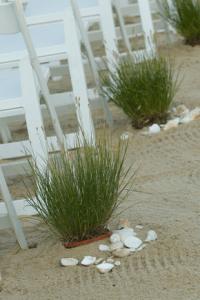 Beach Wedding Aisle Ideas  Inspiration I Destination