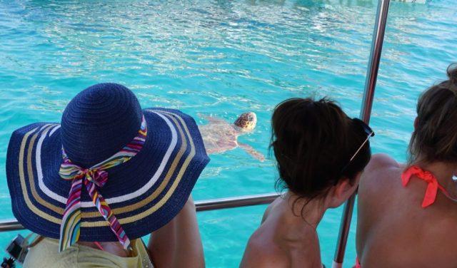 Skildpaddeøen på Zakynthos