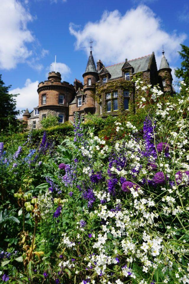 Flowers and castle Edinburgh Zoo