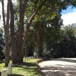 Destination Garden Route - responsible tourism